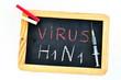 Virus Grippe A