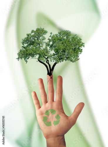 Partisan écologique