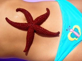 Sea Star on Little Girls Stomach