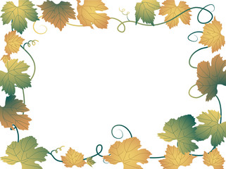 Vector frame from grapevine leaves