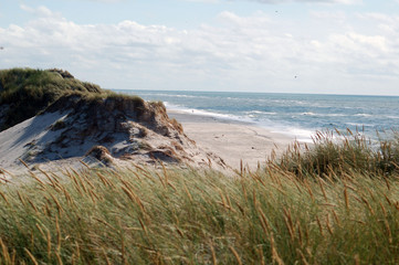 duna vista mare