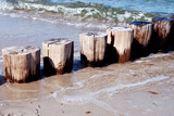 groynes and waves at the beach of the baltic sea poster