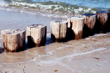 groynes and waves at the beach of the baltic sea