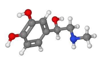 Ball and stick model of adrenaline molecule