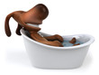 Chien dans son bain