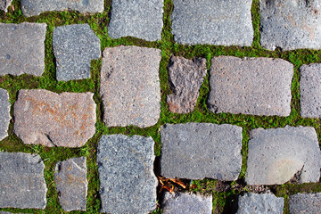 Stone pavement texture