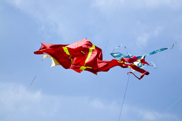 Kites in wind