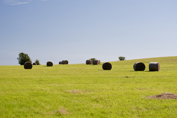 bales of straw