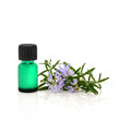 Rosemary Herb Essential Oil