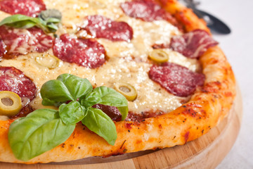 salami pizza close-up