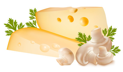 Vector illustration. Cheese with mushrooms