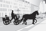 Fototapety two horse-drawn carriage on the street