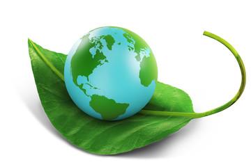 Earth globe sitting on a green leaf