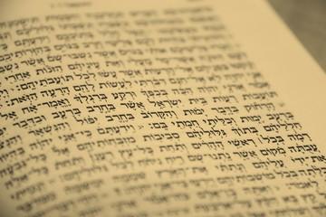 Hebrew Bible Fragment
