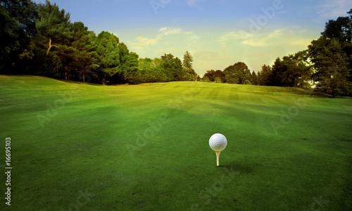 Leinwanddruck Bild golf