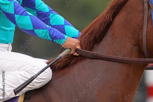 Fototapeta Close-Up of Jockey Holding Reins of Thoroughbred