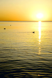 Scenic view of colorful sunset over Baltic sea poster