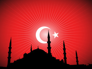 Mosque And Turkey Flag