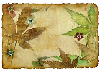 vintage autumn paper background