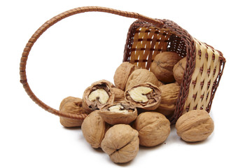 Walnut out of basket