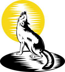 Wild dog or fox howling at the moon