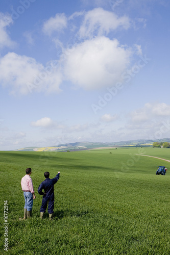 Farmers in young wheat field pointing to fertilizing tractor in distance