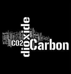 Co2 word cloud