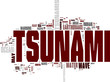Tsunami word cloud
