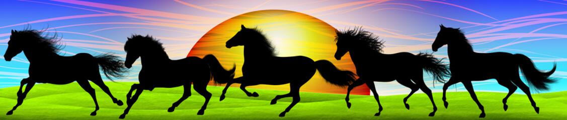 Cavallo Selvaggio-Horse Banner-Cheval Sauvage