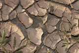 Environmental Climate Change Concept Photo of Dry Cracked Earth poster