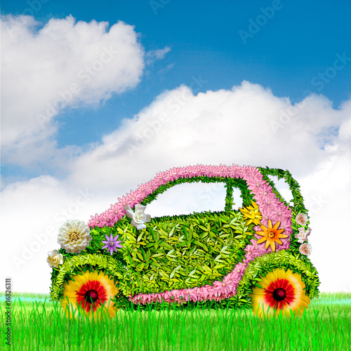 The ecological car