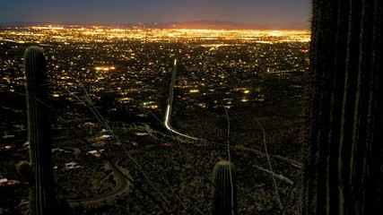 Cactus City Night Lights