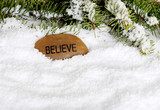 snow with believe stone poster