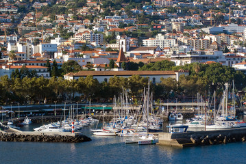 Madeira's Port in Funchal