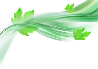 soft green background and leaves