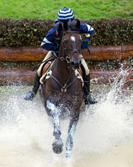 Horse Trial Water Obstacle