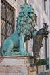 löwe vor residenz, münchen