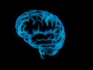 Brain - wobble graphics