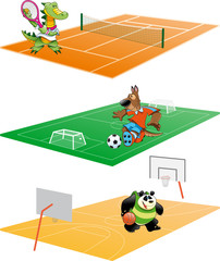 Sport and Animal, cartoon and vector illustration