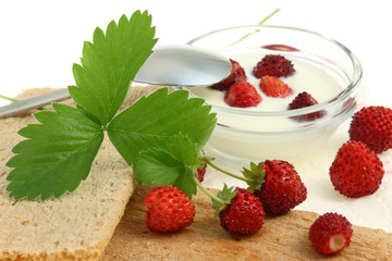 Crispbread and wild berries