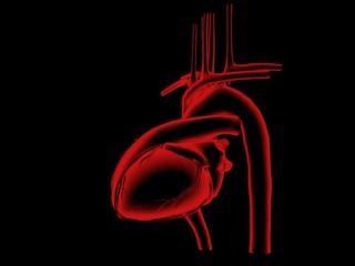 Heartbeat - wobble graphic