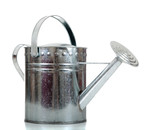 Silver Galvanized watering can poster