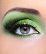 Green make-up of woman eye