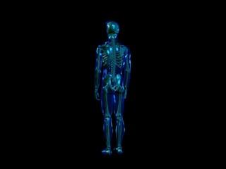Skeleton - loop totale (NTSC)