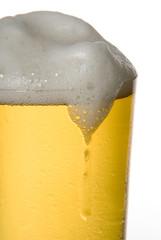 bier fom fass