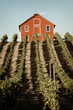 Winery Red Barn