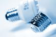 detail of light bulbs