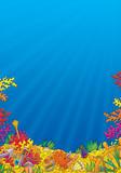 Coral reef-
