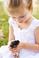 Little girl holding a little black chick for the first time.