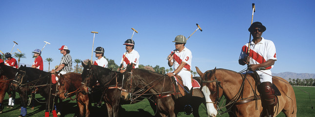 Polo team on horseback in field